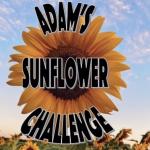 2021 Sunflower Challenge