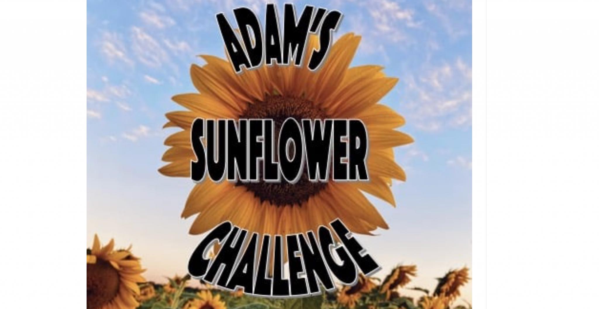2021 Adam's Sunflower Challenge